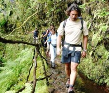 Programme pour célibataires à Île de Madère 5