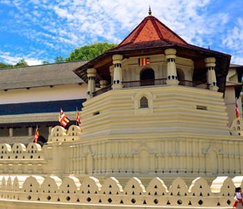 Programme pour célibataires à Colombo - Trincomalee - Kandy - Colombo 6