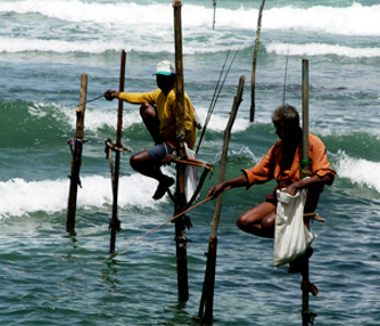 Programme pour célibataires à Colombo - Trincomalee - Kandy - Colombo 2